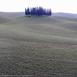 December Countryside near San Quirico d'Orcia, Val d'Orcia, Siena. Author and Copyright Marco Ramerini