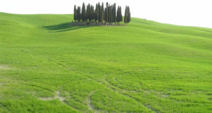 March Countryside near San Quirico d'Orcia, Val d'Orcia, Siena. Author and Copyright Marco Ramerini