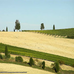 October Countryside near San Quirico d'Orcia, Val d'Orcia, Siena. Author and Copyright Marco Ramerini