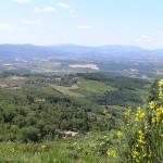 Panorama en la carretera entre San Donato y Castellina in Chianti. Autor y Copyright Marco Ramerini
