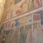 Los frescos de Giotto, Capilla Peruzzi, Basílica de Santa Croce. Autor y Copyright Marco Ramerini