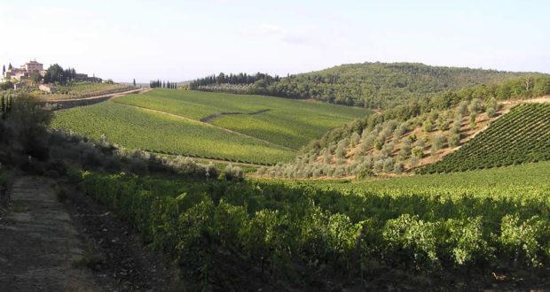 Campagna nei pressi di Radda in Chianti, Siena. Author and Copyright Marco Ramerini
