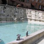 Fonte Gaia, Piazza del Campo, Siena. Author and Copyright Marco Ramerini