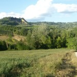 Il tratto di strada sterrata tra l'Agliena e Bagnano. Autore Marco Ramerini