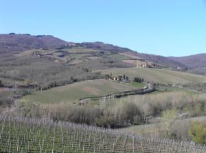 Campagne près de Volpaia, Radda in Chianti, Sienne. Auteur et Copyright Marco Ramerini