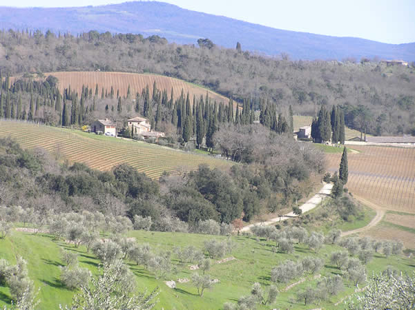 Campagne près de San Gusmè, Castelnuovo Berardenga, Sienne. Auteur et  Copyright Marco Ramerini