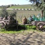 Campagne près de Villa a Sesta, Castelnuovo Berardenga, Sienne. Auteur et Copyright Marco Ramerini