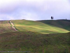 Dicembre Campagna nei pressi di San Quirico d'Orcia, Val d'Orcia, Siena. Autore e Copyright Marco Ramerini.