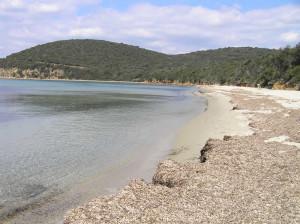 Cala Violina con los restos de algas Posidonia Oceánica dispersos a lo largo de la playa, Scarlino, Grosseto. Autor y Copyright Marco Ramerini