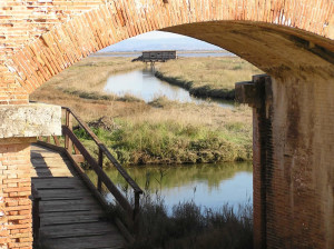 Il ponte della Casa Rossa e la palude della Diaccia Botrona, Castiglione della Pescaia. Author and Copyright Marco Ramerini
