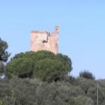 Torre Hidalgo, Punta Ala, Castiglione della Pescaia. Author and Copyright Marco Ramerini