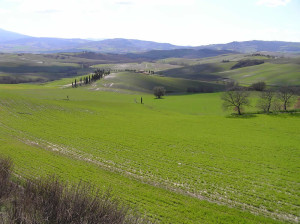 Campagna attorno a Pienza, Val d'Orcia, Siena. Author and Copyright Marco Ramerini