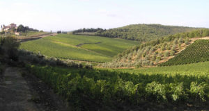 Paisaje cerca de Radda in Chianti, Siena. Autor y Copyright Marco Ramerini