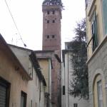 Torre Guinigi, Lucca. Author and Copyright Marco Ramerini