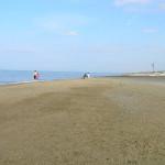 Visuale sulla spiaggia verso il lato nord della costa, Forte di Castagneto, Donoratico, Livorno. Author and Copyright Marco Ramerini