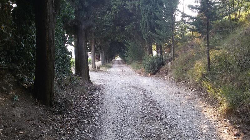 Il sentiero verso Spoiano. Autore Marco Ramerini