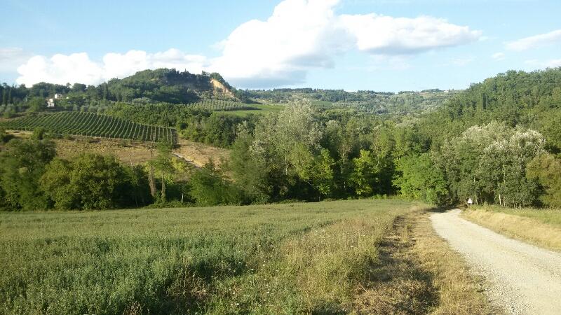 Passeggiata verso l'antica città di Semifonte. Il tratto di strada sterrata tra l'Agliena e Bagnano. Autore Marco Ramerini