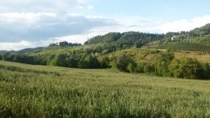 Paesaggio della valle dell'Agliena. Autore Marco Ramerini