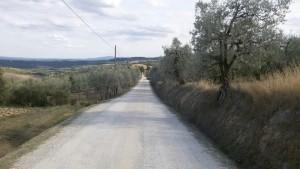 La prima parte della strada bianca. Via Francigena da Gambassi a San Gimignano