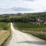 Panorama. Via Francigena da Gambassi a San Gimignano.