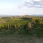 San Gimignano. Via Francigena da Gambassi a San Gimignano.