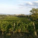 San Gimignano. Via Francigena da Gambassi a San Gimignano..