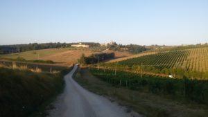 Passeggiata nel Chianti tra Barberino val d'Elsa, Tavarnelle Val di Pesa e il Ponte Nuovo. Autore e Copyright Marco Ramerini