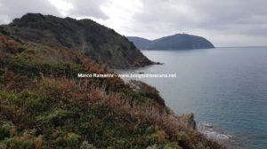 Passeggiata sul mare tra San Vincenzo e Baratti. La costa verso Populonia. Autore e Copyright Marco Ramerini