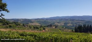 Panorama sul Chianti. Autore e Copyright Marco Ramerini