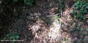 Resti di mura dell'antica Semifonte. Autore e Copyright Marco Ramerini