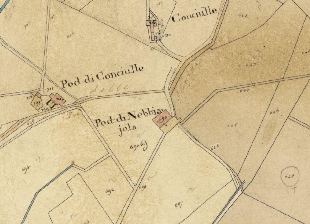 Il podere Nebbjola come riportato nella Mappa del nuovo catasto del Granducato di Toscana, 1820-1830. Progetto C A S T O R E - Regione Toscana e Archivi di Stato toscani.