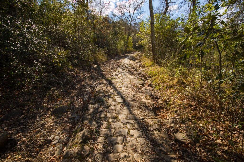Un altro tratto della strada tra La Paneretta e Cortine. Foto Marco Ramerini