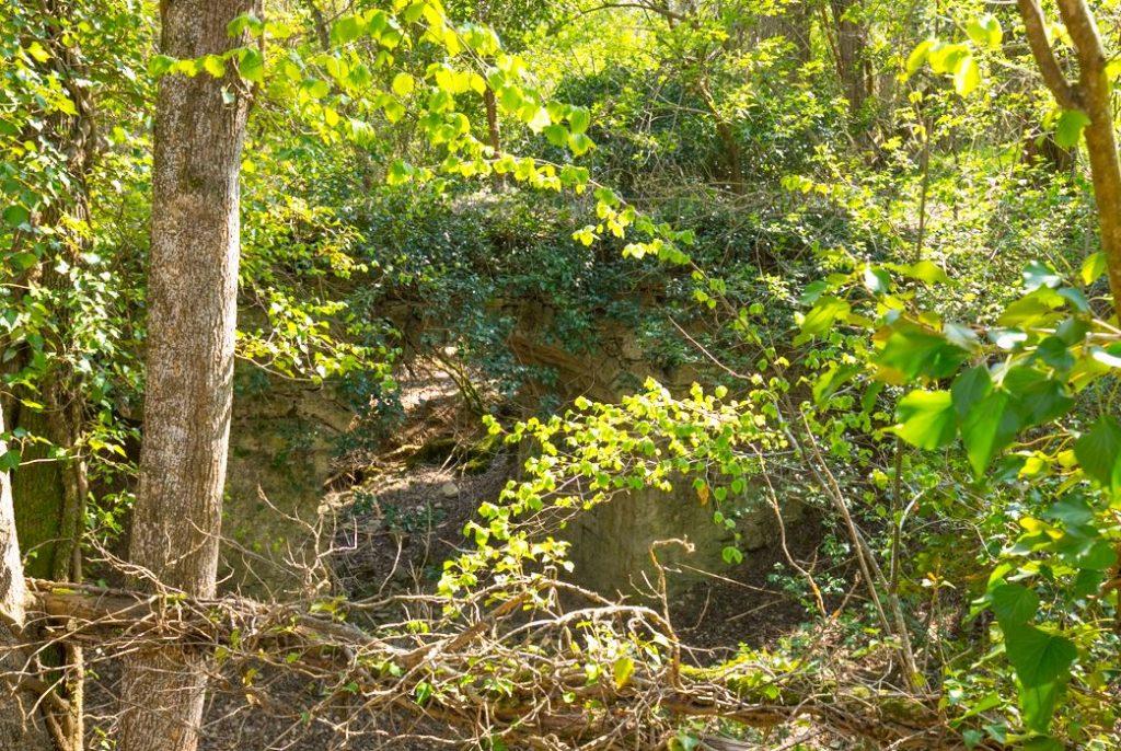 Il ponte avvolto dalla vegetazione risulta quasi invisibile. Autore e Copyright Marco Ramerini